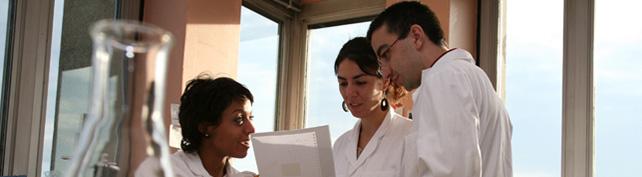 Education and Training – IARC